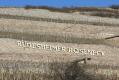 Berg Roseneck