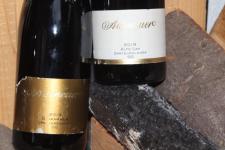 2019 ALTE LAY GG Spätburgunder | Hochwasserwein